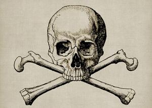 skull-1515874_640